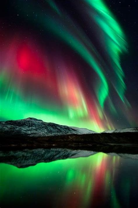 Northern Lights Red And Green Red Green Pinterest Lights And Green