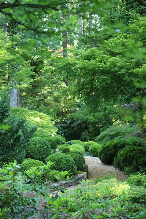 Green Garden by Beautiful Composition And Varieties Of Textures In Green