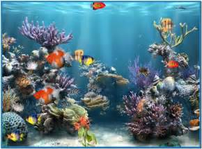Coral reef 3d screensaver   Download free