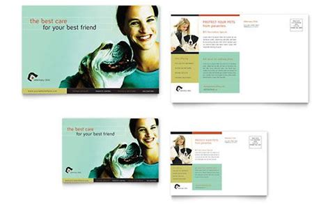 26 best ideas about pets animals marketing on newsletter templates stables