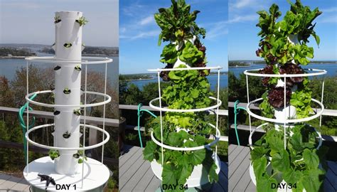 england aeroponic tower gardens images