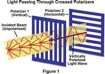 what is polarized light what is polarization of light light physics