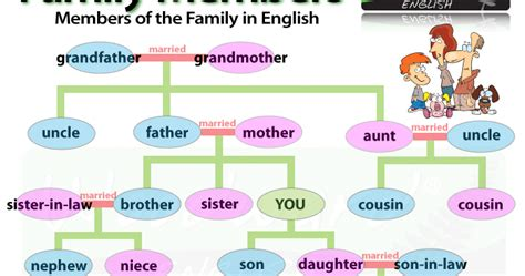 how to section a family member cpi tino grand 237 o bilingual sections family members