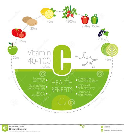 vitamin c vegetables chart healthy lifestyle infographic vitamin c in fruits and