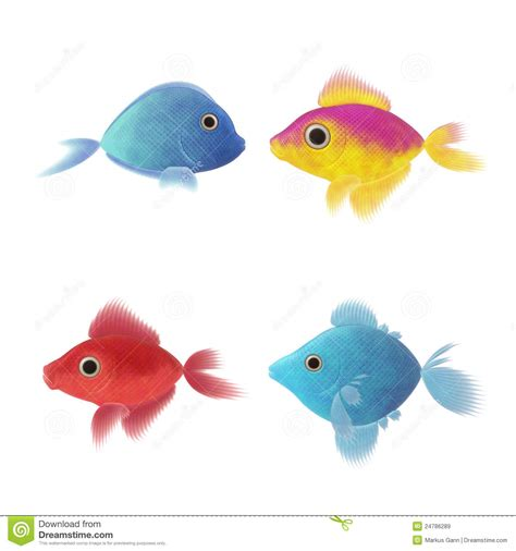 four fish illustrations royalty free stock images image
