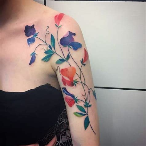 watercolor tattoo sydney 1000 ideas about sweet pea on delicate