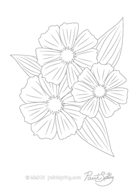 cosmos flower coloring page printable flower adult coloring book get 3 free pages