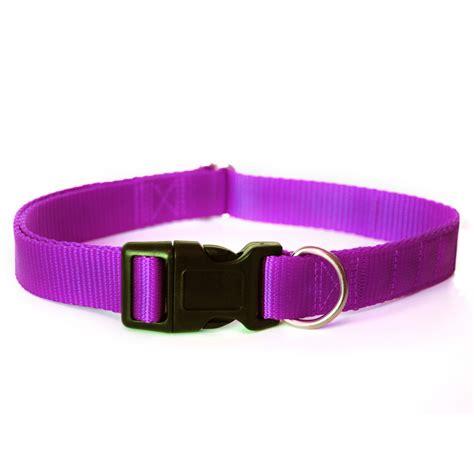 purple collars magnetic collar purple canine magnetix