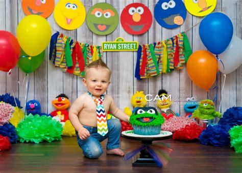 Sesame Street  Ee  First Ee    Ee  Birthday Ee   Cake Smash Photo