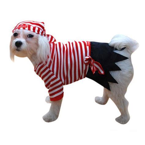 pirate costume for dogs striped pirate costume pirate costumes for dogs