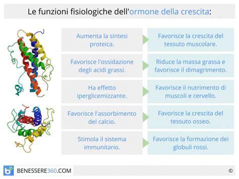 alimenti stimolano l erezione ormone della crescita funzioni ed effetti collaterali