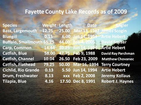 Fayette County Records Fayette