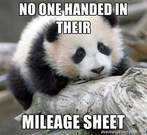 Sad Panda Meme Generator - the best memes from raco in 2014 raco industries