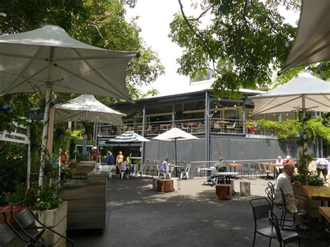 royal botanic gardens sydney restaurant the royal botanic garden sydney sydney