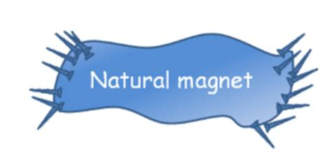 in the science and of organic magnetism classic reprint books physics learn beautifulpictures of magnet and its