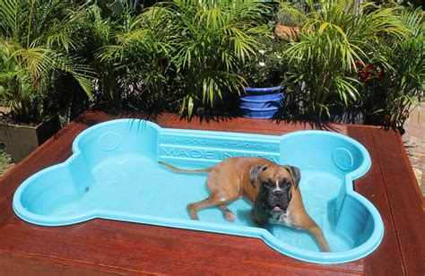 puppy pool pools quality bone shaped pools australian lover