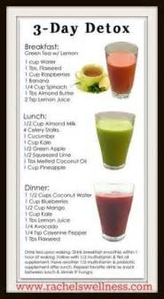 3 Day Detox Smoothie Diet Plan by Juice Detox On Detox Juices Detox And Detox Diets