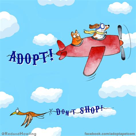 how to adopt a new adopt don t shop 187 adoptapet