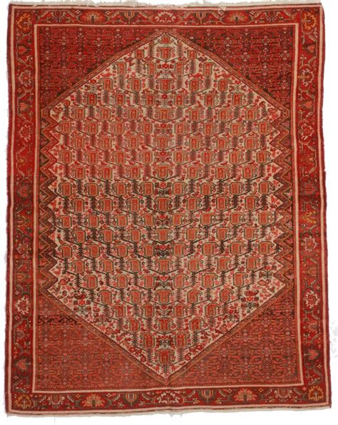 Antique Persian Senneh 5x6 Wool Oriental Rug 8585 6 Wool Rug