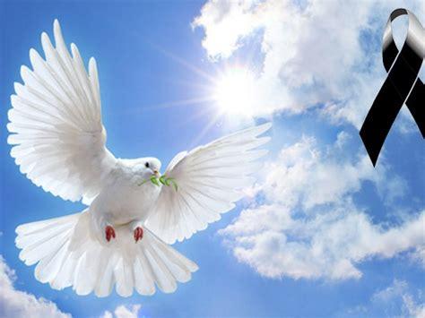 imagenes de luto con reflexión notas condolencias aviaci 243 n militar bolivariana