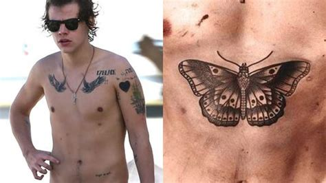harry styles butterfly tattoo harry styles gets transgender butterfly as