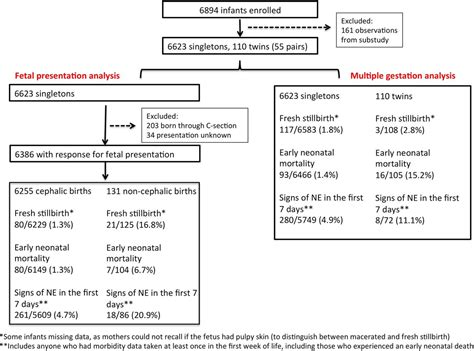 risks of multiple c sections risk and burden of adverse intrapartum related outcomes