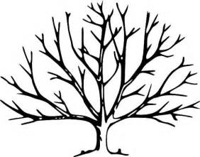 Leafless Tree Branch Outline by Fall Tree Without Leaves Coloring Page Tree