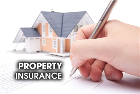 property insurance best book