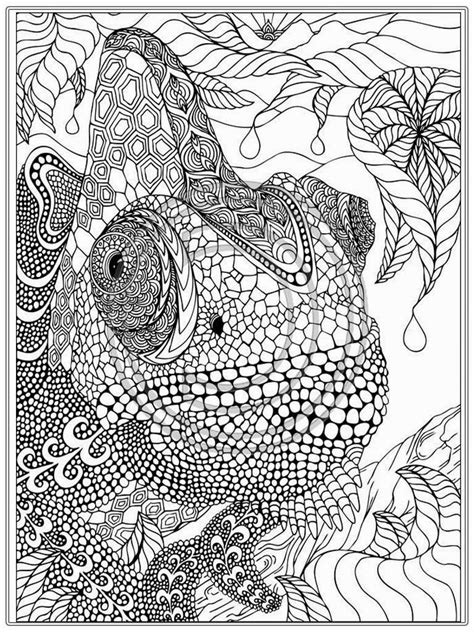picture book for adults printable iguana coloring pages realistic coloring