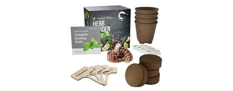 indoor herb garden kits   buying guide