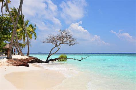 maldives   paradisiac beaches   water
