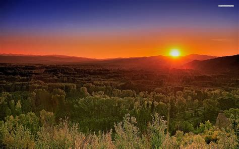 red sunset great forest wallpapers red sunset great
