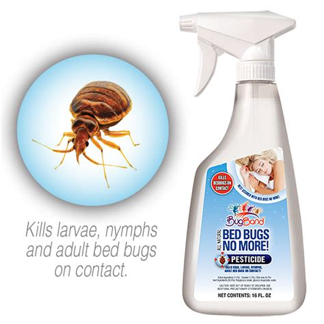 what kills bed bugs on contact bed bugs no more pesticide kills bed bugs on contact