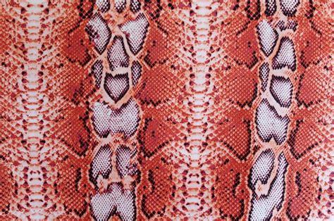 snake skin print on behance dance costume lycra fabric orange snake skin print 50cm