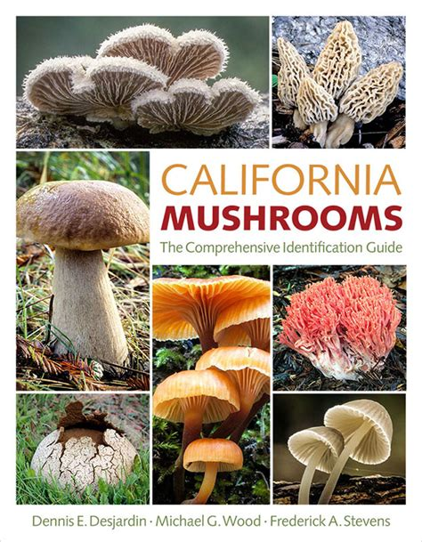 mushrooms of the southeast a timber press field guide books mykoweb book review