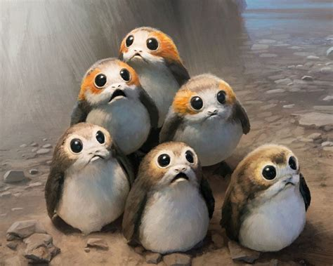 wars the last jedi chewie and the porgs books the last jedi porgs are they the ewoks of the new trilogy
