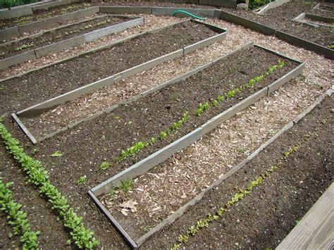 garden soil 101