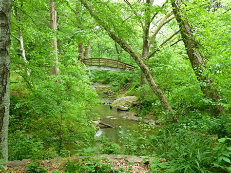 Botanical Gardens Asheville by Botanical Gardens At Asheville