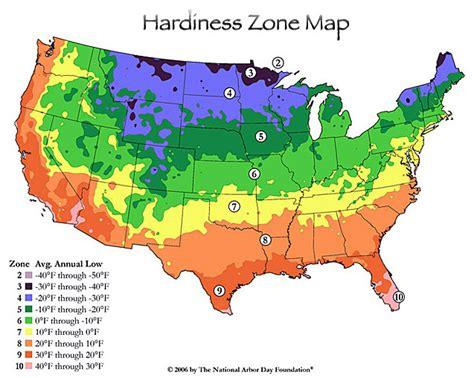 maple trees hardiness zone 4 marion on shoppinder
