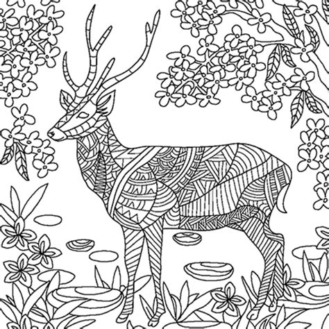 colorfy app coloring pages colorfy adult coloring for animals pages amazon de apps