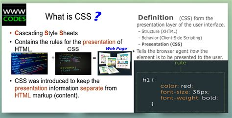 tutorial on html and css css tutorial