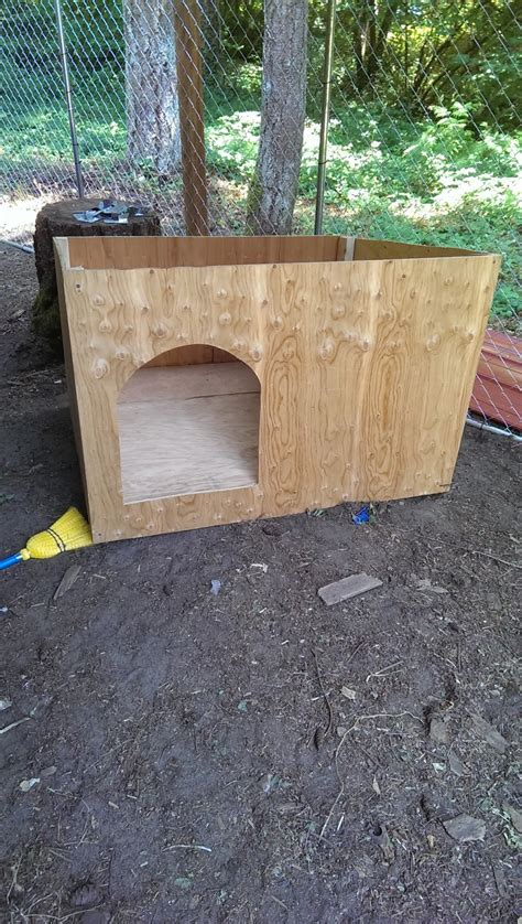 home made dog houses dog kennel ideas dog breeds picture