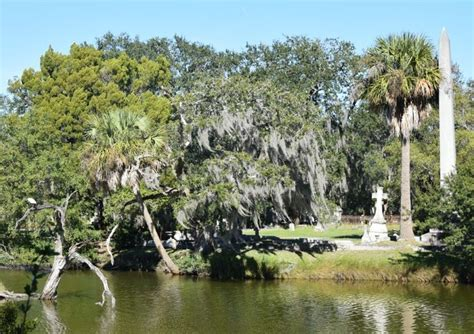 piccoli laghetti da giardino oltre 25 fantastiche idee su laghetti da giardino su