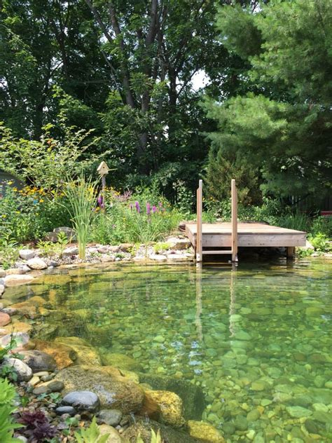 safe and sustainable backyard pools well being magazine
