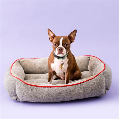 stylish dog beds treat your pup to a stylish dog bed thats super easy to