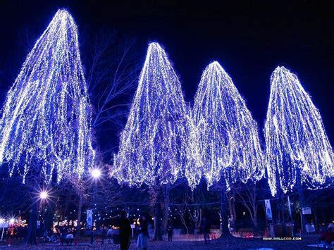 outdoor tree lights christmas lights holiday lighting