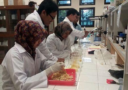 Plastik Pembungkus Dodol Mahasiswa Ugm Memanfaatkan Kulit Shank Ayam Sebagai