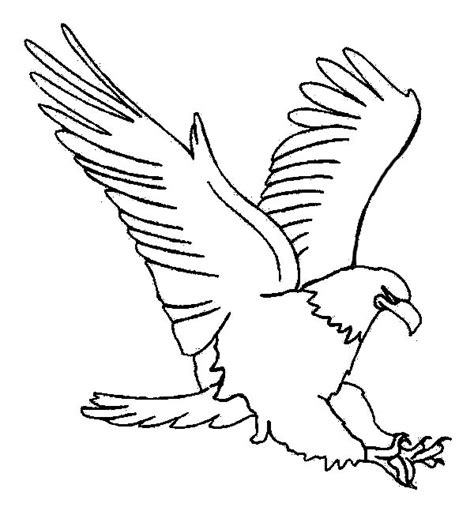soaring eagle coloring page eagle and flag coloring page bald eagle is hungry