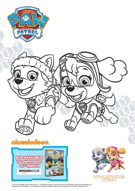coloring page paw patrol everest paw patrol pups and the pirate treasure play and learn
