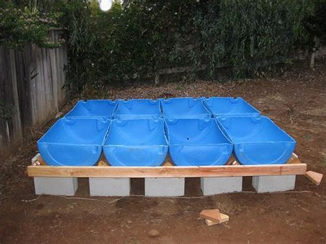 backyard aquaponics plans backyard aquaponics barrel must see easy aquaponics